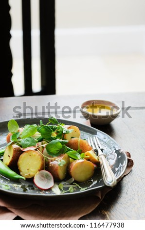 Gourmet potato salad with greens served on wooden table as light meal, lunch or dinner