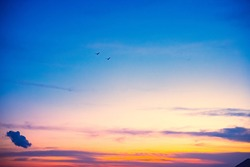 gradient sky scenery at dusk. two birds are flying in it.