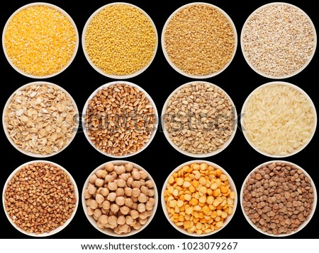 Grain and cereal food selection in bowls. 1: crushed corn, 2: millet, 3: crushed wheat; 4: crushed barley; 5: oat flakes, 6: wheat, 7: barley, 8: rice, 9: buckwheat, 10: chick-pea, 11: pea, 12: lentil #1023079267