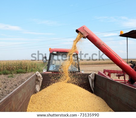 Grain auger of combine pouring soy bean into tractor trailer