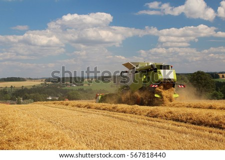 Grain harvester on field during hot summer harvest, blue cloudy sky on background, rare perspective, straw in rows, bio agriculture, fertilized grain field #567818440