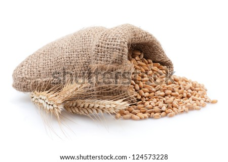 Grains in small burlap sack isolated on white background.