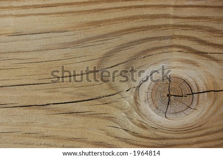 Grainy wood with knot background/texture