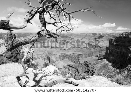 grand canyon national park in...