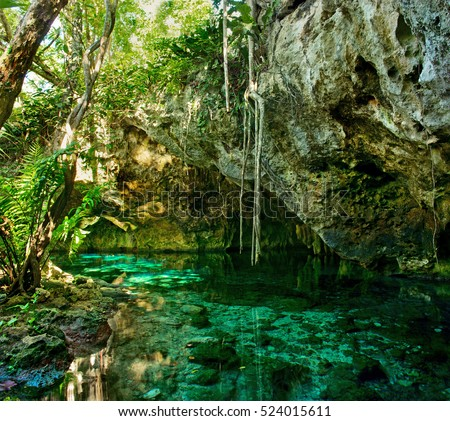 Shutterstock Grand Cenote. This is one of the most famous cenotes in Mexico.