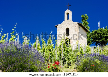 grand cru vineyard and Chapel of St. Christopher, Hermitage, Rhone-Alpes, France