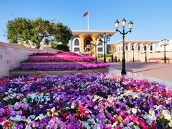 Grand Palace of Muscat from left hand side with purple and white flowers in the foreground and the palace in the distance with ornate lamp post between.