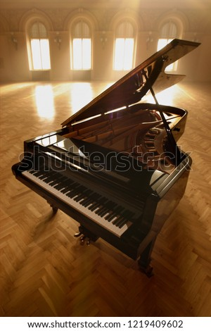 Grand Piano in Concert Hall #1219409602