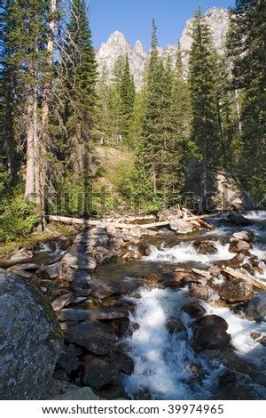 Grand Teton National Park, waterfall and rapids high in the mountain