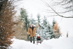 Grandfather and small girl sledging on a winter day.