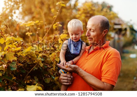 Grandfather holding grandson and giving him grapes while standing in vineyard at autumn.