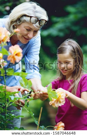 Grandmother gardening with her granddaughter