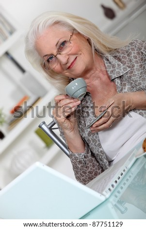 grandmother using laptop at home - stock photo