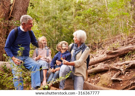 Grandparents and grandchildren eating together in a forest