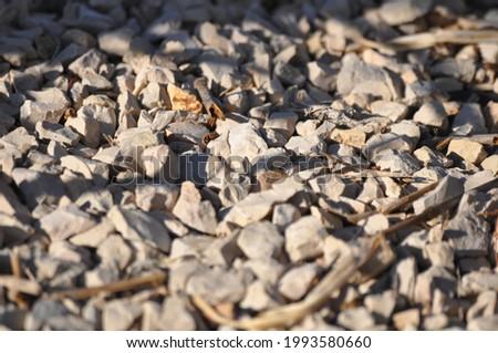 Granite gravel constrution and garden