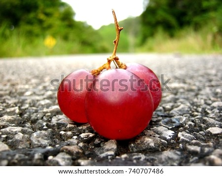 grape on the road #740707486