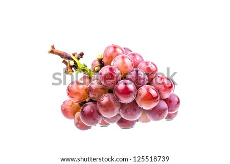 grape shoot with white background in studio - stock photo