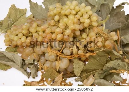 grapes #2505892