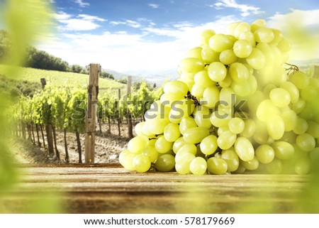 grapes fruits on desk and summer day  #578179669