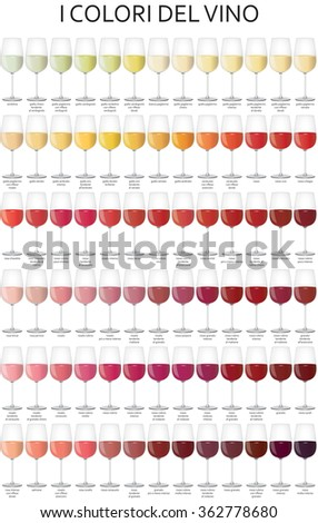 graphic illustration of the colors of the wine