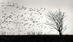 Graphic image of a flock of birds flying away from a lone tree