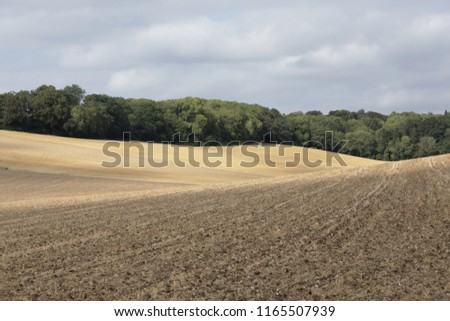 Graphic minimalist landscape showing the contours of a ploughed wheat field. Patchy autumn sunlight exaggerates the texture of a vast rolling field with trees and clouds on the horizon.   #1165507939