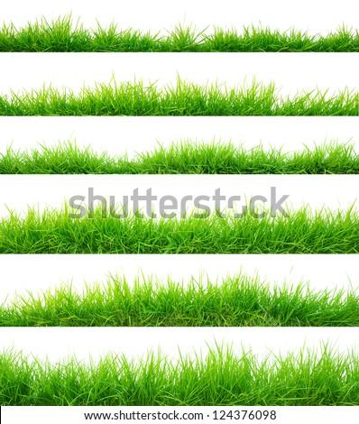 Grass - Shutterstock ID 124376098