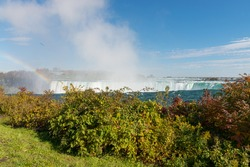 Grass and bushes in front of top of Horseshoe Falls, a part of Niagara Falls, with a powerful stream of water falling down on the background