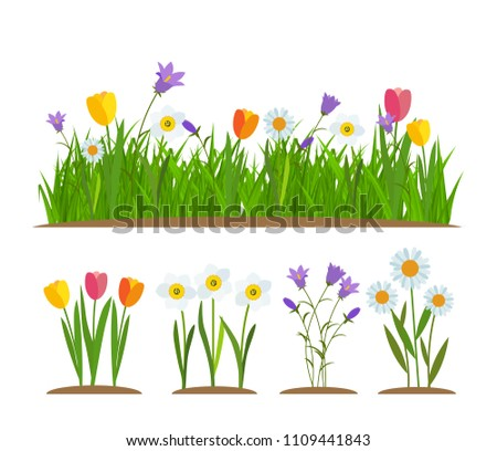 Grass and flowers border, greeting card decoration element White Background.  Illustration.  #1109441843