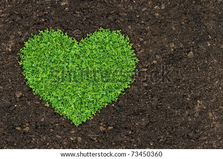 grass and green plants growing a heart shape on soil manure in the birds eye view.
