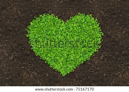 grass and green plants growing a heart shape on soil manure in the birds eye view
