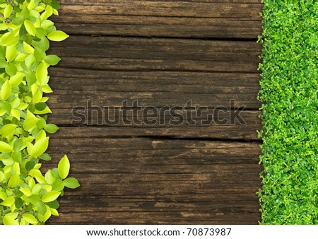 grass and Small green plants depend on old wood.