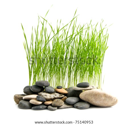 grass and stone on a white background