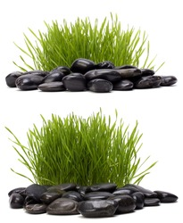 grass and stones isolated on white background