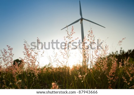 grass and sunset with wind turbine background
