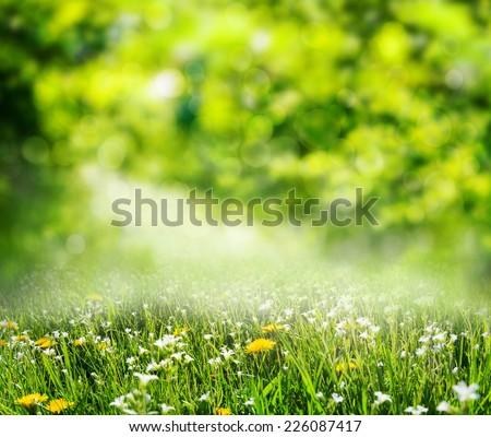 grass background - Shutterstock ID 226087417