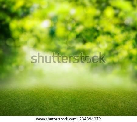 grass background - Shutterstock ID 234396079