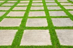 Grass between stones, block paving,.