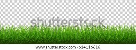 Grass Border