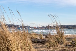 Grass covered beach and big waves with a view of Fisgard Lighthouse and cranes from Coburg Peninsula, Victoria, British Columbia