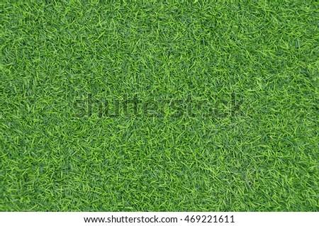 grass field background - Shutterstock ID 469221611