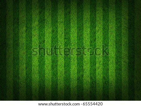 grass field background - stock photo