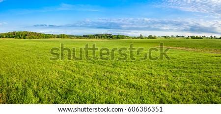 Shutterstock Grass field, green spring landscape, panoramic vista