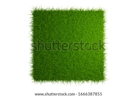 grass field isolated on white background with clipping path, 3d render