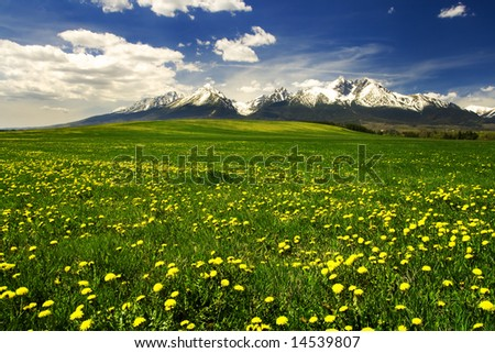 Grass field with High Tatras mountains in Slovakia