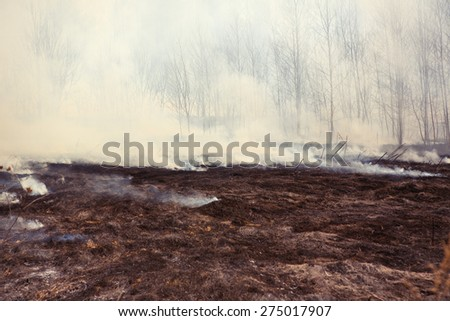 Grass Fire with Smoke, horizontal