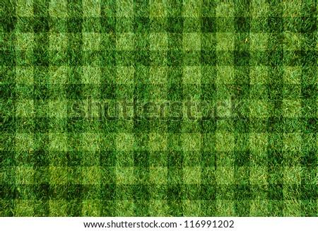 grass football field green