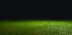grass for soccer