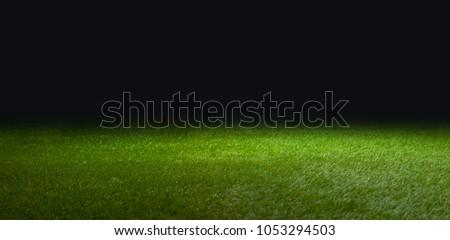 grass for soccer #1053294503