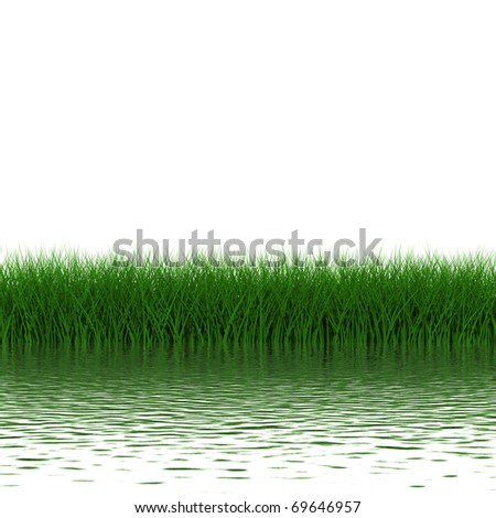 Grass frame with realistic water reflections